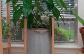 Soporte de la planta simple de madera espiga