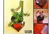 USB planta útil, el compañero de oficina perfecto