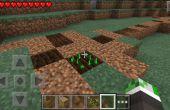 Cómo obtener semillas de remolacha en minecraft PE.