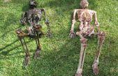 Cómo al cadáver un esqueleto (el rápido y sucio camino que no implican látex)