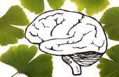 5 Consejos beneficiosos para mantener el cerebro sano para siempre