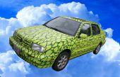 Pájaros de una pluma Drive juntos - pintar tu coche en un loro
