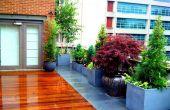 Diseño del paisaje de la ciudad de Nueva York - cómo hacerlo en la azotea jardín