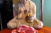 No vegano deleite ¿de Xtreme Buddha en un tubo de piel