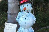 Fusión (Florida) muñeco de nieve Navidad/decoración de vacaciones