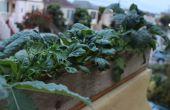 Fácil jardinera elegante caja de madera reciclada