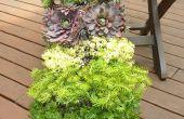 Jardín vertical sistema w/brillante verde
