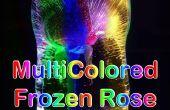 Multicolores congelados rosa luz