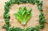 Cómo: Mantener los verdes frescos