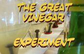 El experimento del vinagre gran