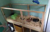 Construir una jaula de cobaya con fácil limpieza! (Proyectos con niños)