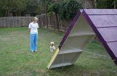 BRICOLAJE a agilidad de perro