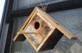 Ver a través de la plataforma Birdhouse