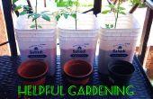 Cultivador de tomate cubierta - actualización de cubo