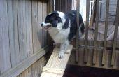 Rampa de perro para las cubiertas de