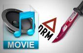 Cómo encontrar el mejor iTunes DRM Converter Crack iTunes DRM protección para usted