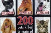 Los abusos de animales más grande de personas contribuir a diario