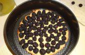 Comer especies invasoras: Blackberry del Himalaya crema pastelera empanada