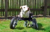 Adaptable para sillas de ruedas para perros discapacitados