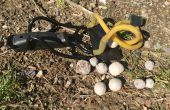 Bombas de semillas DIY