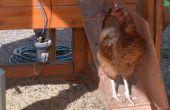 Su sobre una granja de pollos inteligentes