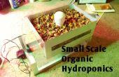 Hidroponía orgánica, pequeña escala