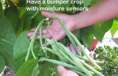 Tener una cosecha con sensores de humedad y ARDUINO
