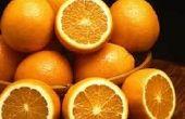 Hacen las pulgas huyen con cáscaras de naranja