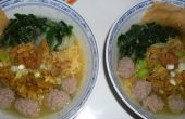 Pollo sopa de albóndigas de fideos (Mie Ayam Bakso)