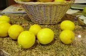 ¿Muchos izquierda sobre limones?  Hacer limones salados chino!