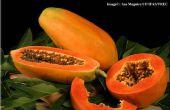 Uso de papaya como un multiusos remidies caseros