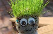 Corte de pelo Chia Pet hierba cabezas!  Ideal para vacaciones de verano!
