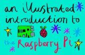 Una introducción ilustrada a la frambuesa Pi