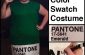 ¿Pantone Color Swatch traje