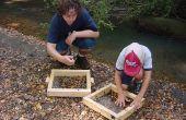 Cómo construir una pantalla de fósiles