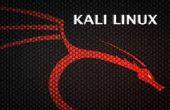 Hacking Internet tiendas con linux burpsuite y kali