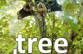 Encantos del árbol