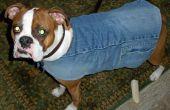 Hacer una chaqueta de perro forrada de mezclilla reciclada y una bufanda gratis! (o casi)