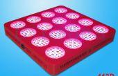 LED crece la luz empresa