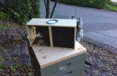 Un paquete de abejas de encorchamiento