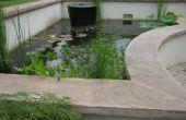 El último estanque Koi