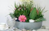 Arreglo Floral costera con suculentas