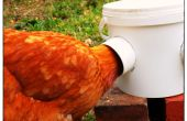 Super pollo Simple alimentador