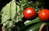 Agricultura nacional sostenible - construcción, siembra y cosecha
