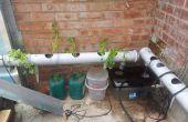 Cómo configurar y ejecutar un sistema de hidroponía