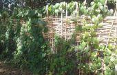 Una valla de privacidad de bambú de la armadura