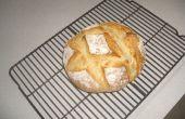 Pan artesano en 5 minutos un día