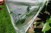 Extracto limpio, plantas de agua potable