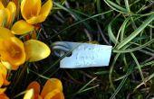Cómo hacer marcadores de la planta durable
