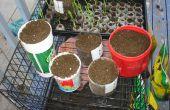 Hacer su propia casa jardín envases de botellas de plástico